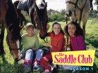 https://www.amazon.com/The-Saddle-Club/dp/B00D1207D4